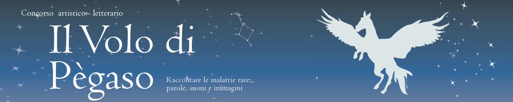 """XIII Concorso letterario, artistico e musicale """"Il volo di Pegaso"""" scadenza 1/11/2020"""